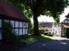 Blick von der Heimatstube zur Linde an der Petri Kirche. (© Mike Schwarz)