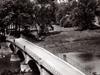 Blick auf die Ederbrücke von Höhe des Schießstandes (Hintergrund Pension Küthe) um 1955. (© Karl-Hermann Völker)