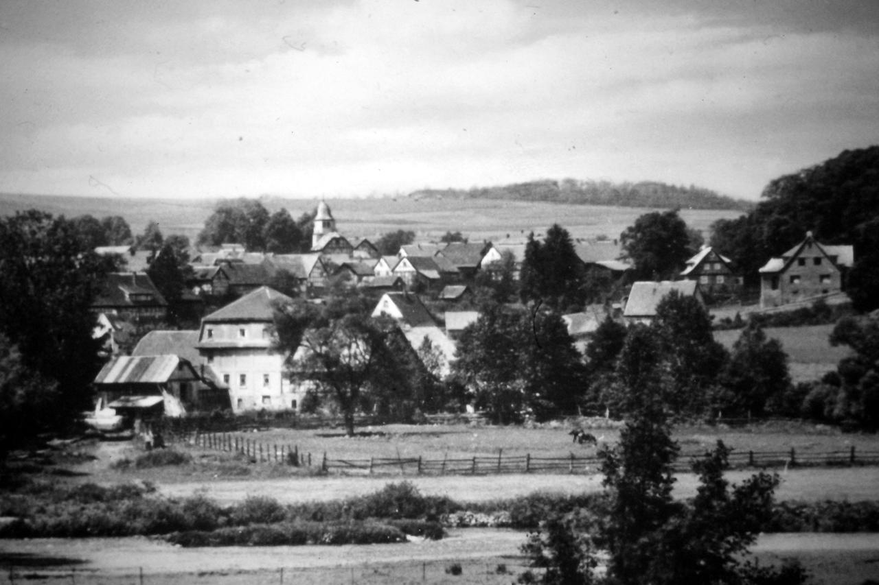 Dorfansicht von der Stede mit Mühle im Vordergrund, Anfang 1950. (© Stadt Frankenberg Eder)