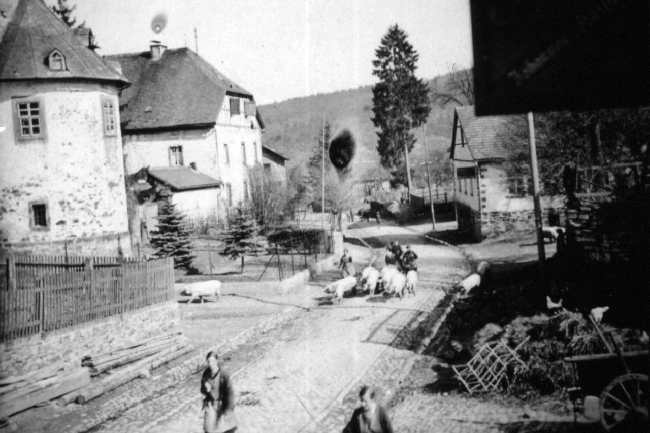 Schweinetrieb auf der Hauptstraße Höhe Oberhof, Anfang 1930er. (© Stadt Frankenberg Eder)