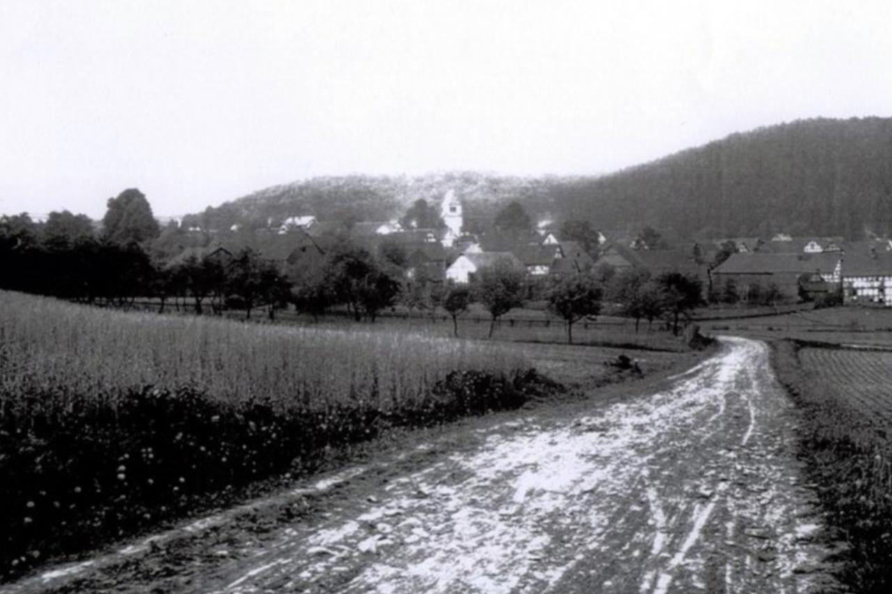 Blick zum Hainsemannskopf, Aufnahme um 1910. (© Stadt Frankenberg Eder)